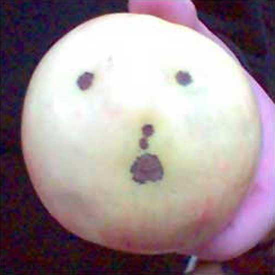 Artistic Apple