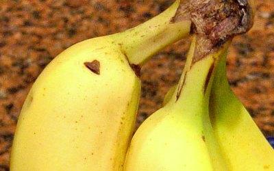 Small Heart Banana