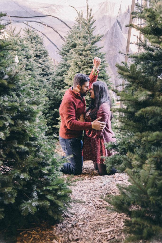 25 days of christmas