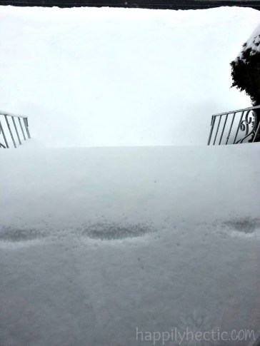 snow front steps