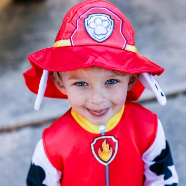 Party City Paw Patrol Cute Toddler
