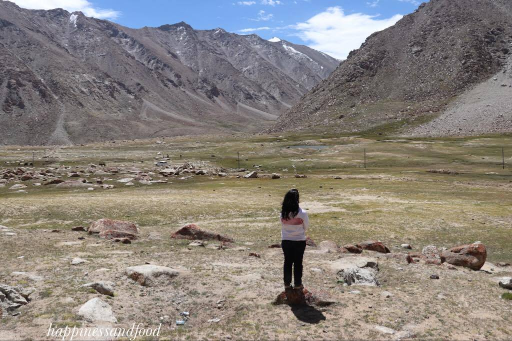 Pangong Tso - more than a lake