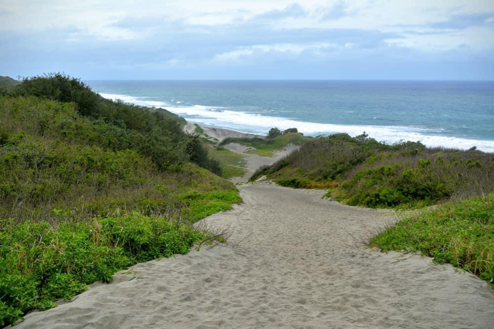 Climbing the last dune