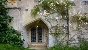 Enchanting openings and windows