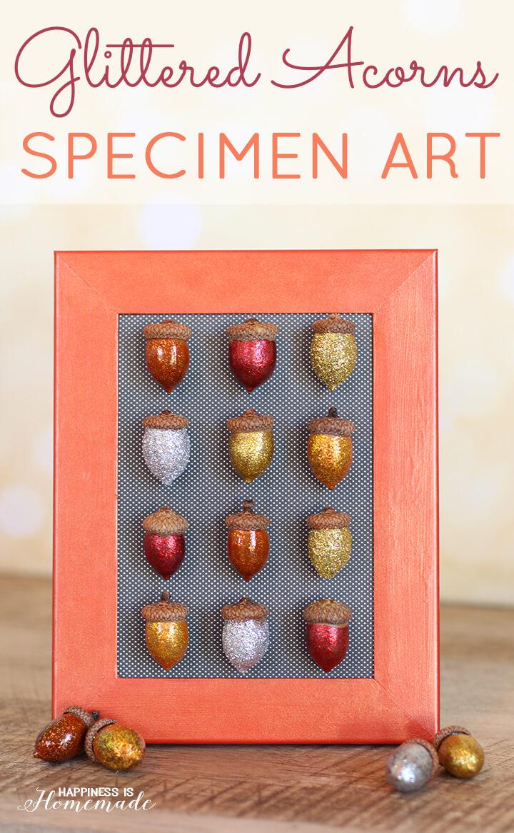 Glittered Acorn Specimen Artwork