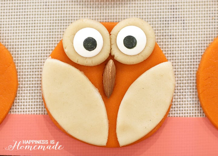 Owl Cookie Before Baking