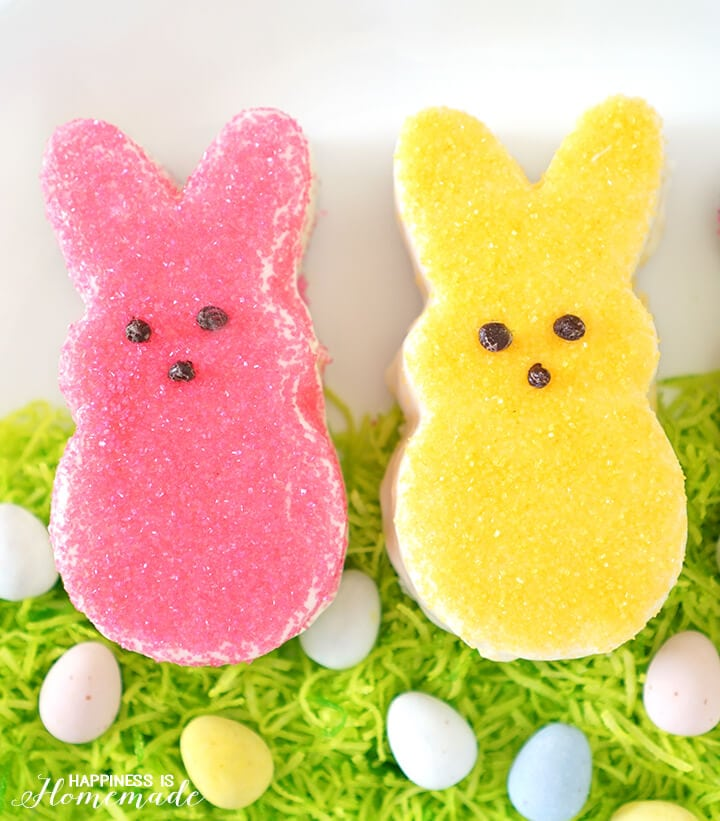 Mini Easter Bunny Cakes