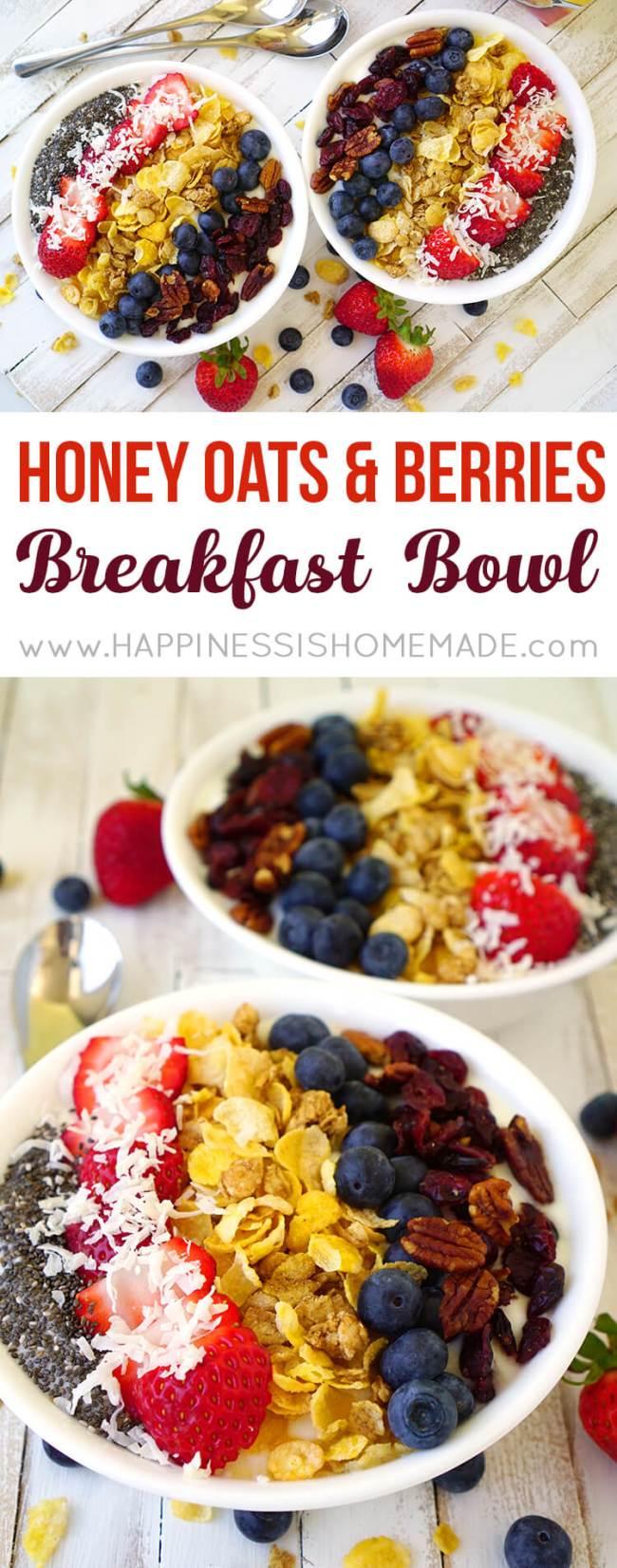 honey-oats-and-berries-healthy-breakfast-bowl
