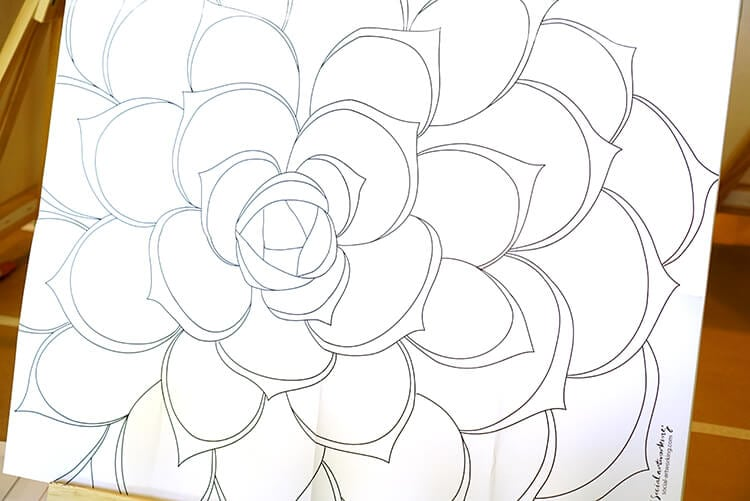 pattern-and-transfer-paper