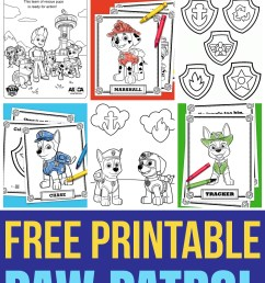 you ll go crazy for these printable paw patrol coloring sheets featuring ryder chase [ 1500 x 2900 Pixel ]