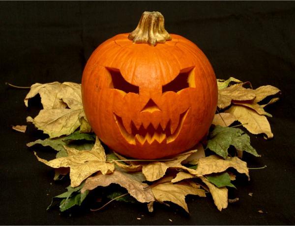 Geschnitzte Kürbisse - Kürbisgesichter zu Halloween