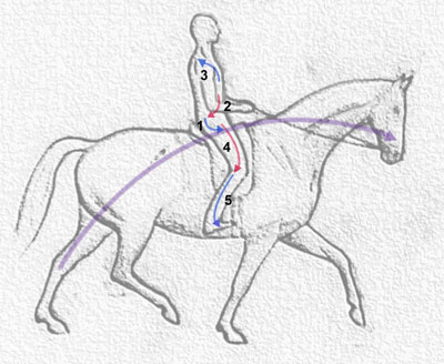 How To Ride Dressage… Real Dressage!
