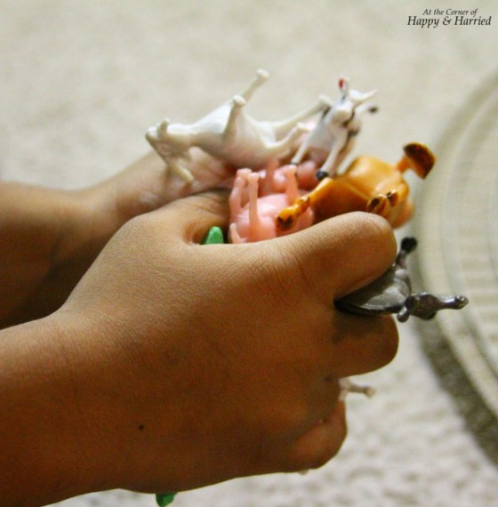 Photography Styling Challenge_Order - Toy Animals in Hand