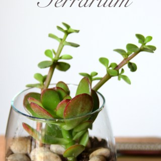 Spring Decor – DIY Glass Jar Terrariums