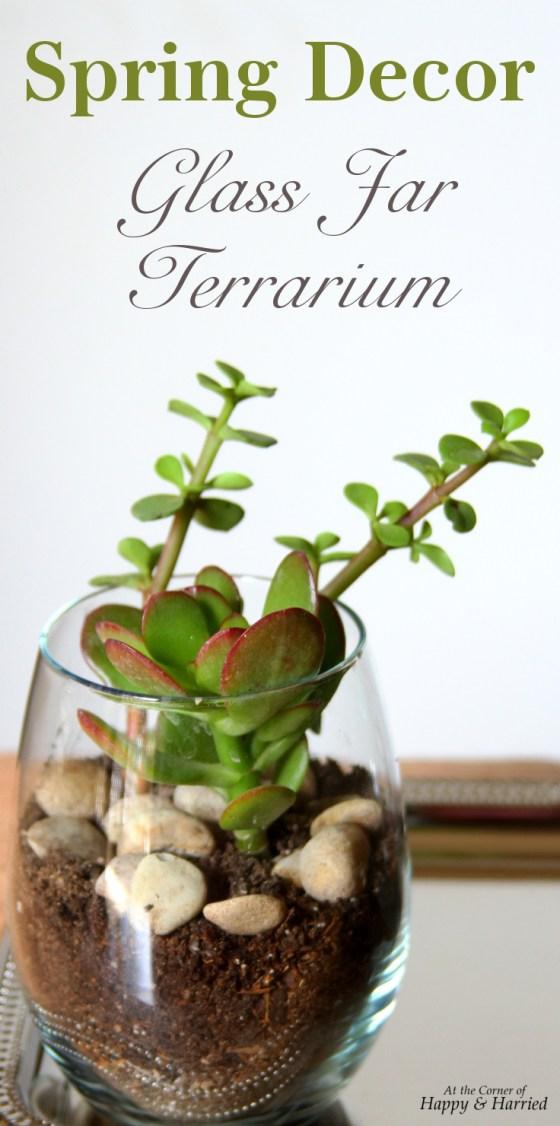Easy Spring DIY - Glass Jar Succulent Terrarium