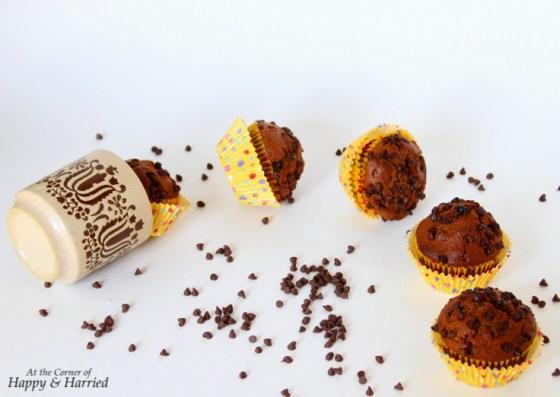 Chocolate-Chocolate Chip Muffins