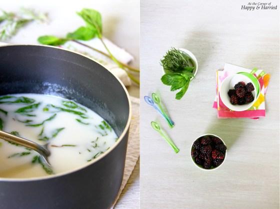 Herb Infused Coconut Milk Ice Cream Recipe