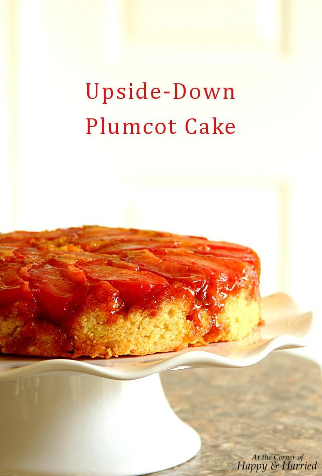 Upside Down Stone Fruit Cake