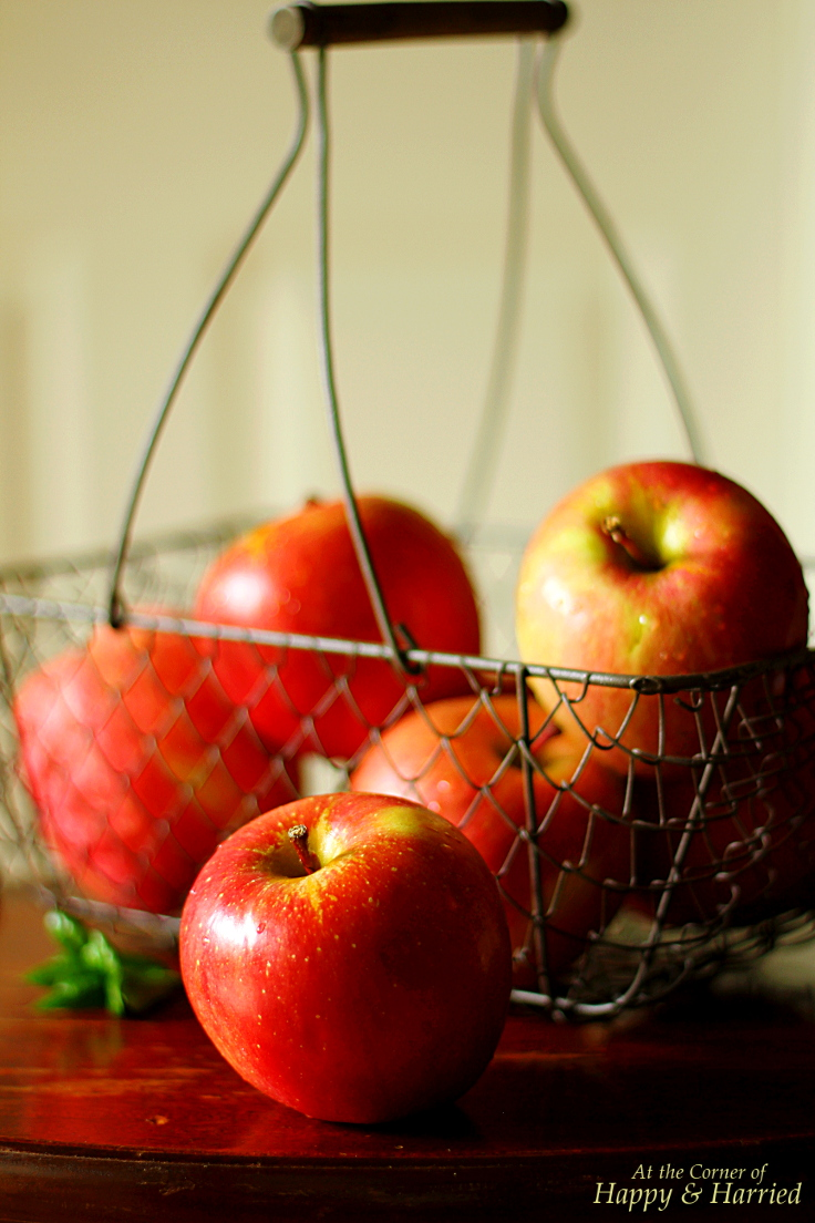apple coconut burfi