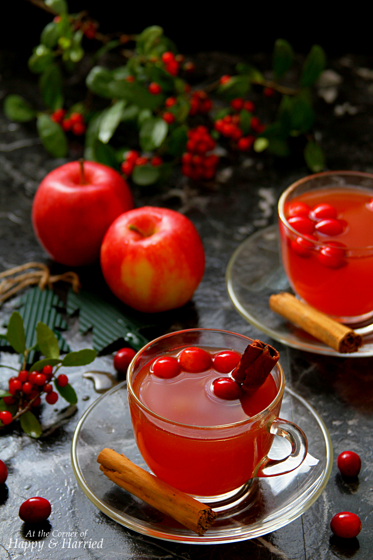 Mulled Apple Cider With Cranberries & Oranges: Non-Alcoholic Christmas Drink