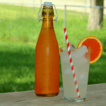 Orange Soda ~ Ginger Bug