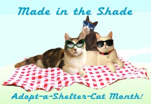 Made in the Shade Adoptions!