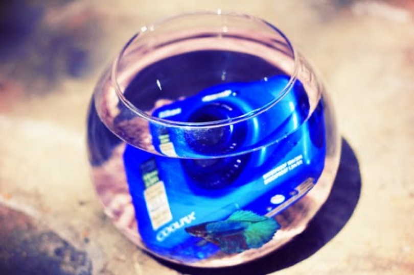 Nikon Coolpix S32 - Souvenirs aquatiques