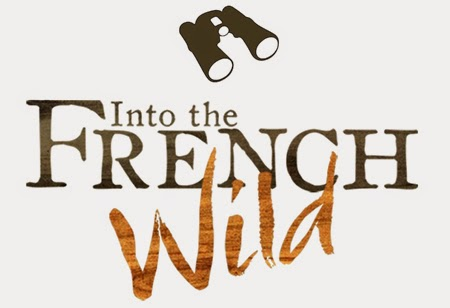 Into the French Wild - Remi Dupouy - NAT GEO WILD