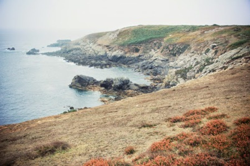 Into the French Wild - Remi Dupouy - NAT GEO WILD