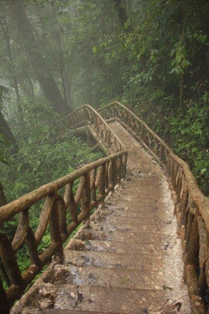 Costa-Rica-Carnet-voyage-10