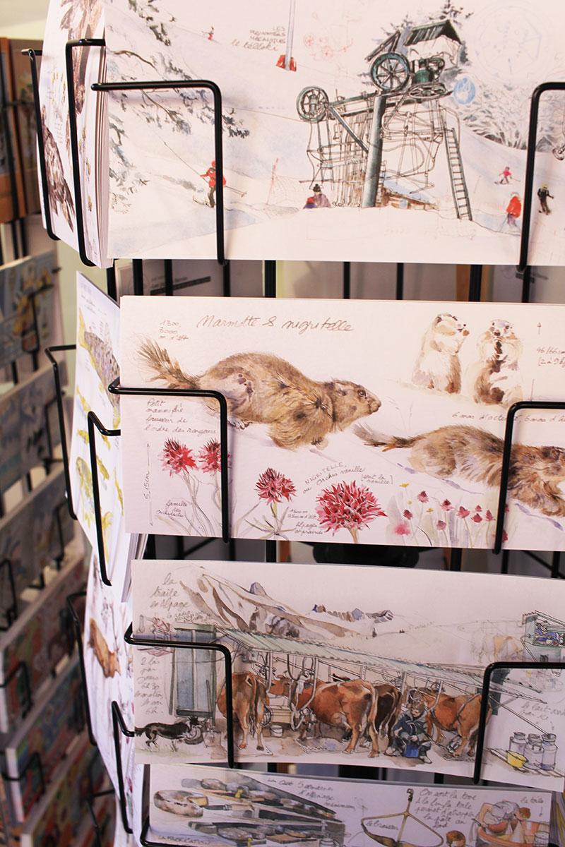 Cartes postales avec des marmottes trouvées à La Clusaz