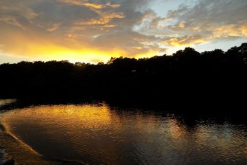 This photo shows the sun setting over Caroni Swamp
