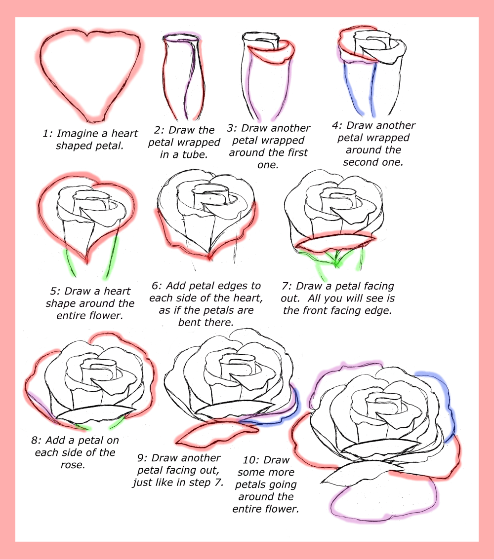 medium resolution of how to draw roses