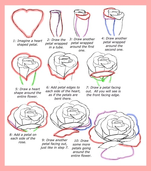 small resolution of how to draw roses