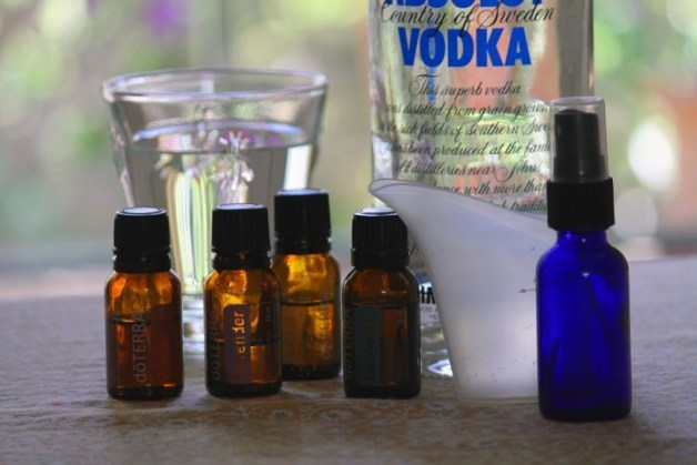 10 DIY Eco Bug Sprays To Keep Your Summer Sane