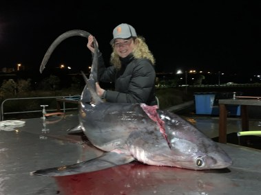 happy-fisherman-fishing-Portland tresher shark