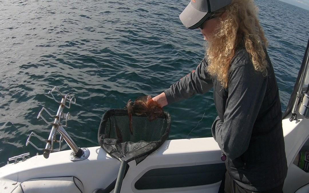 happy-fisherman-squid