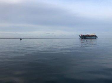 port-phillip-bay-fishing-rye-happy-fisherman