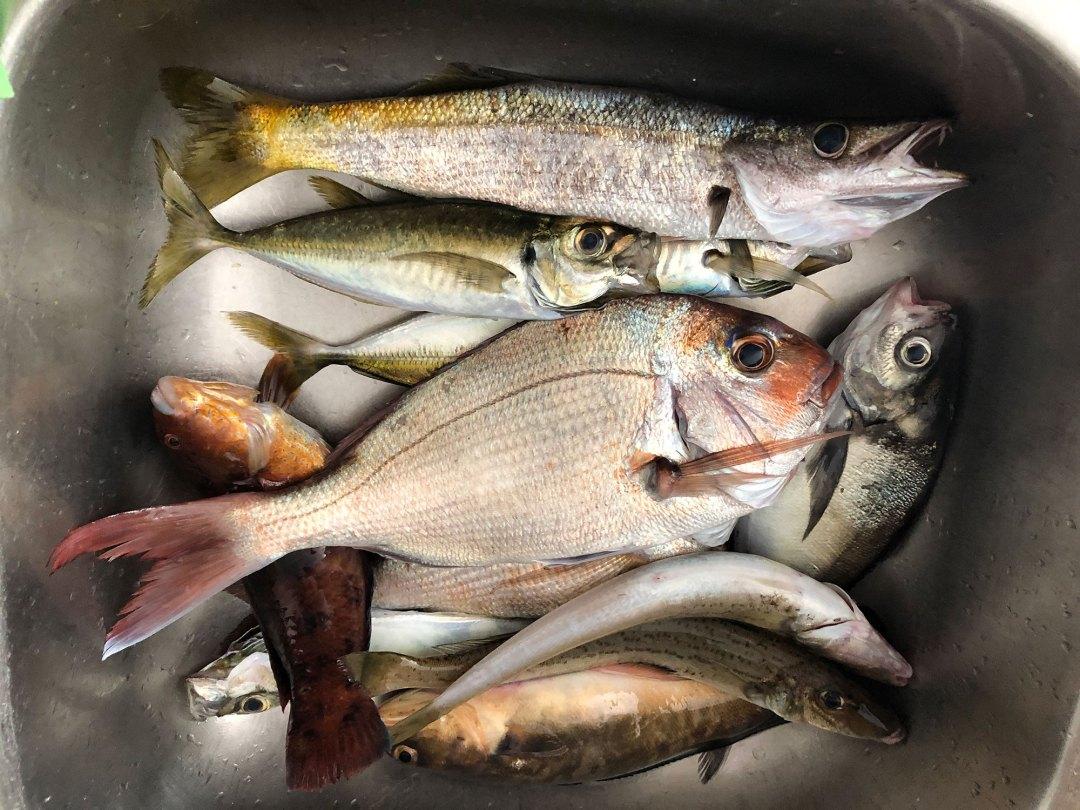 -happy-fisherman-fishing-port-phillip-bay