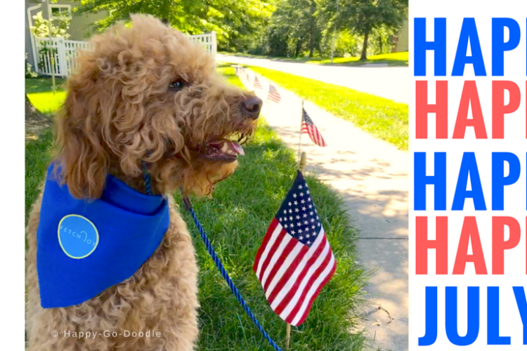 Patriotic dog with blue bandana sitting with flags and title Happy Happy Happy July 4