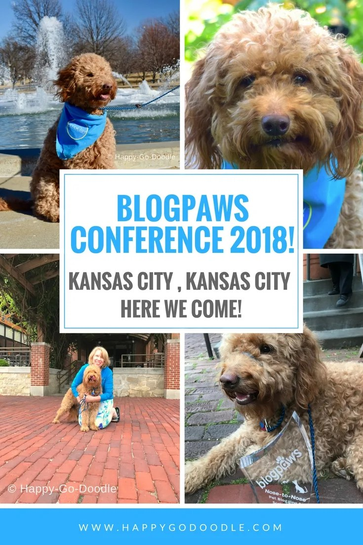 Red goldendoodle dog in a Kansas City and title BlogPaws Conference 2018 Kansas City Kansas City Here We Come
