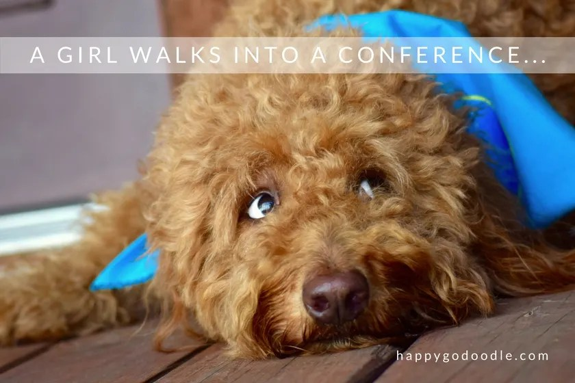 red goldendoodle dog and title a girl walks into a blogpaws conference