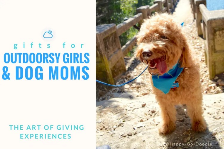 red goldendoodle dog by a stone bridge and title gifts for outdoorsy girls and dog moms the art of giving experiences