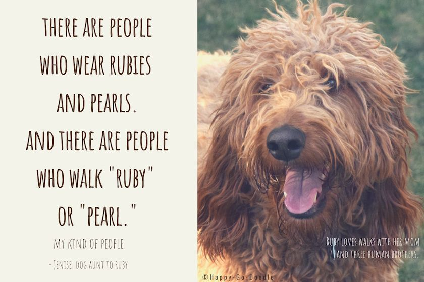 10 Quotes for Dog Lovers That Remind Us It's a Wonder-fur World (All