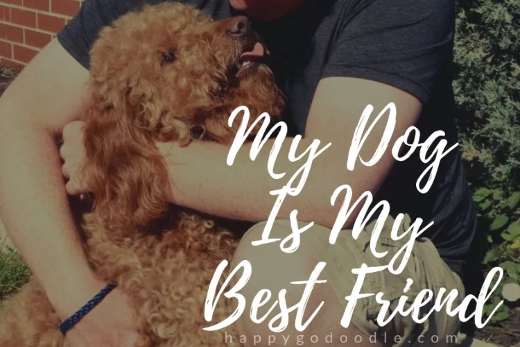 dog in human's arms and title my dog is my best friend