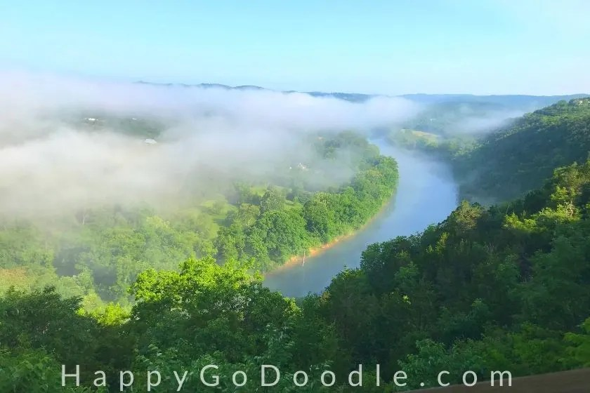expansive view of fog lifting over a river surrounded by green trees as example of something that makes me happy, photo.