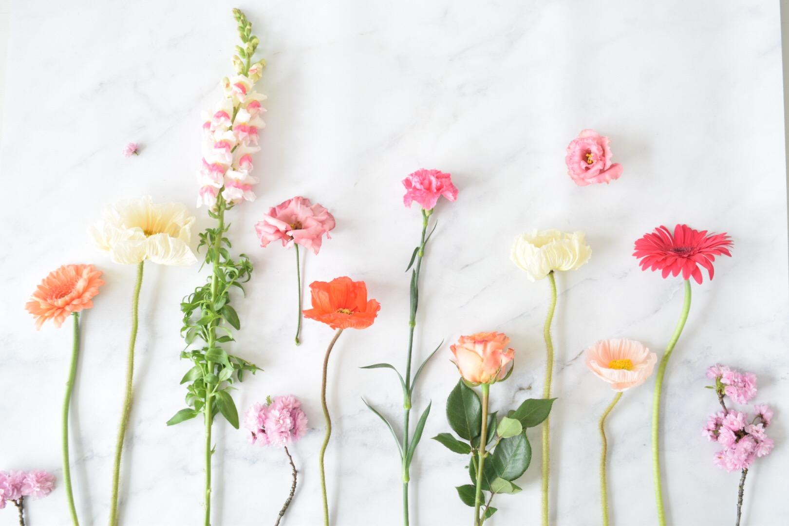 Bloemen geven of krijgen?