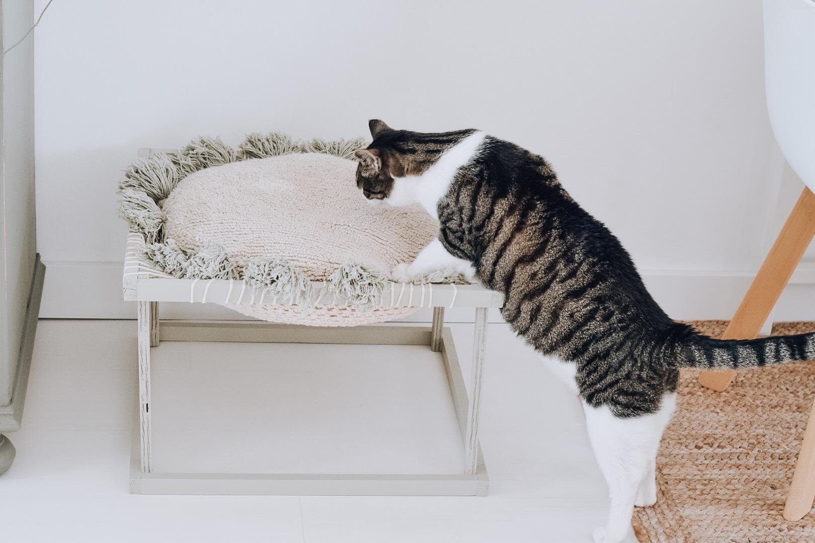 DIY kattenhangstoel