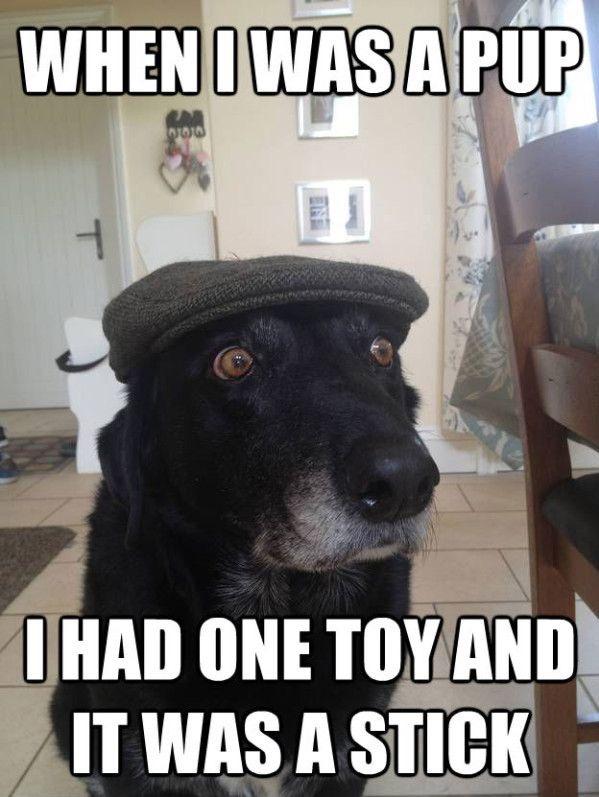 When I was a pup I had one toy and it was a stick!
