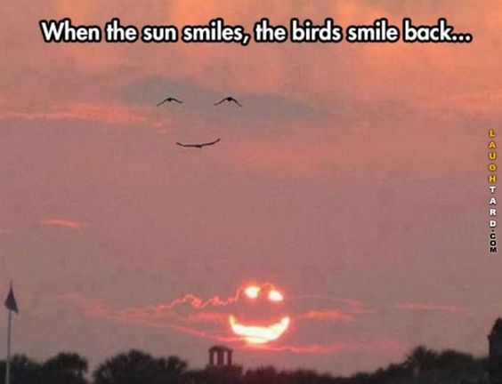 When the sun smiles, the birds smile back